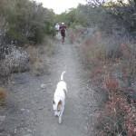 Ojai Day Hikes - goojai.com
